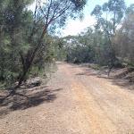 Bobbin head Trail (78460)