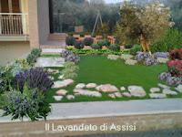 Progetti giardini privati progetti balconi e terrazzi for Piccoli giardini ornamentali