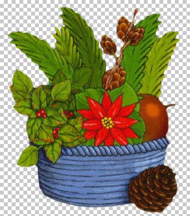 kt_christmas-plant.jpg