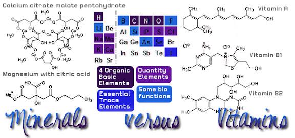 Vitamins versus Minerals by Raederle.com