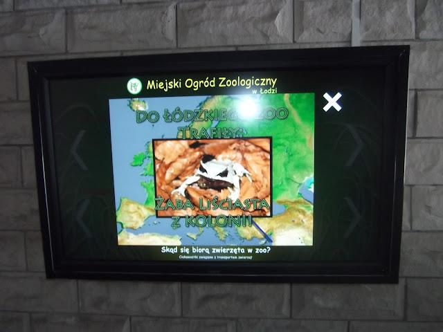 Ekran, na którym można obejrzeć filmy o łódzkim zoo