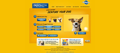 denture-your-dog