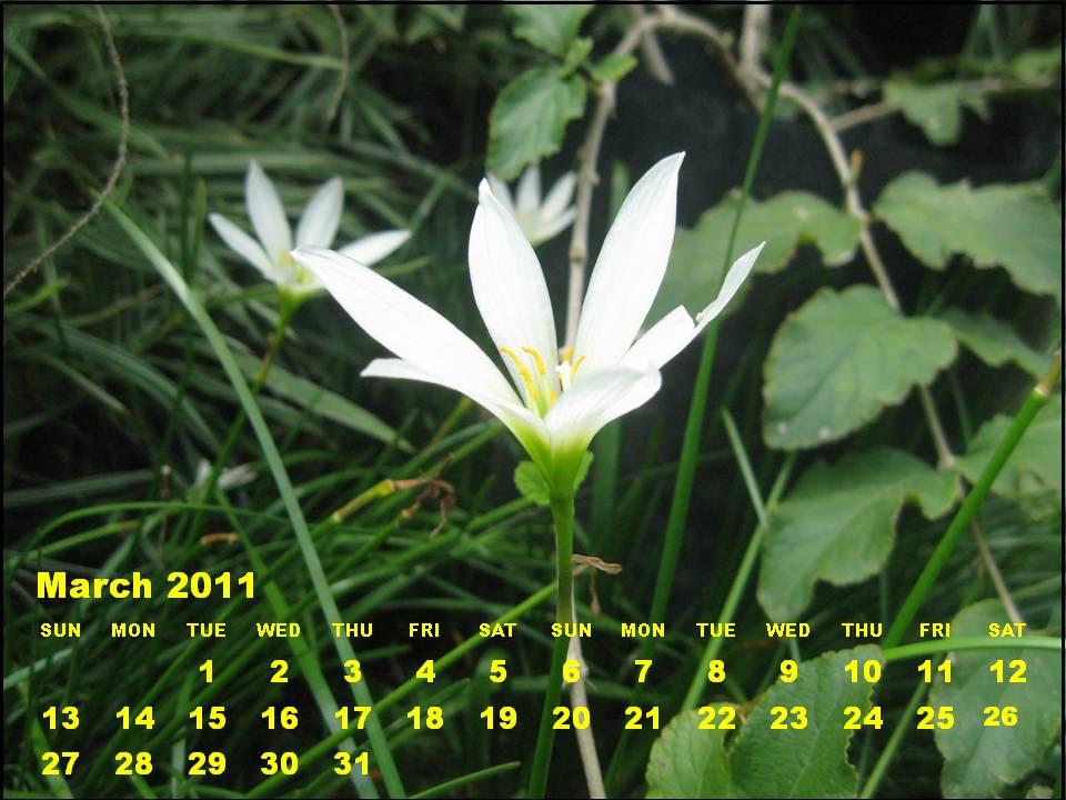 march calendar 2011. +calendar+2011+march