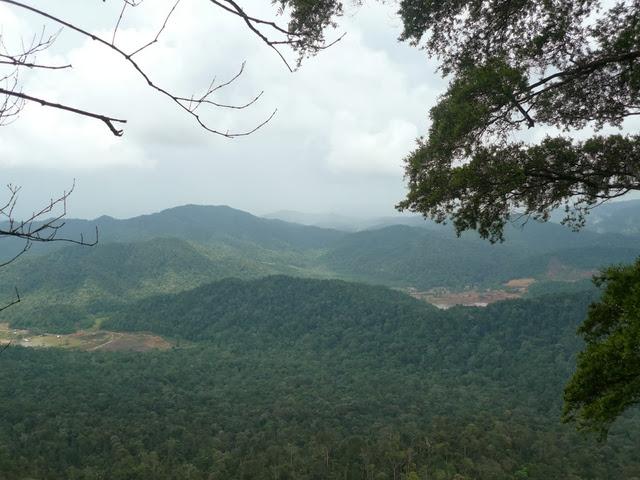 Gunung-Panti-Mount-Panti