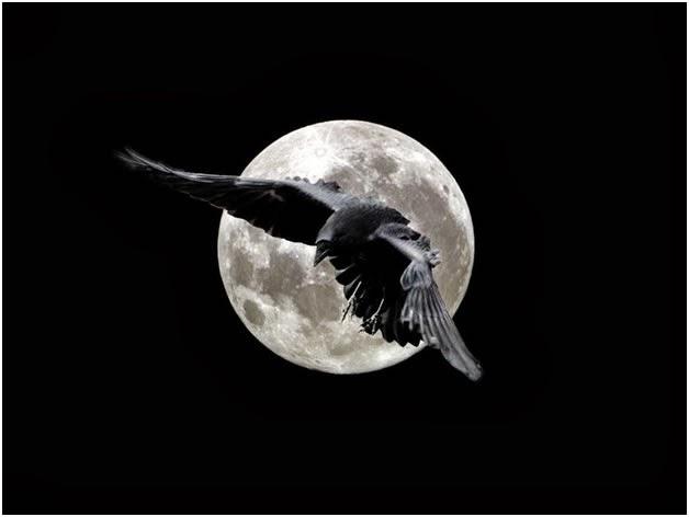 В афразийской языковой семье также известны случаи наименования неба чёрным, по-русски вороным, ведь чёрный-вороной – это цвет ночного неба