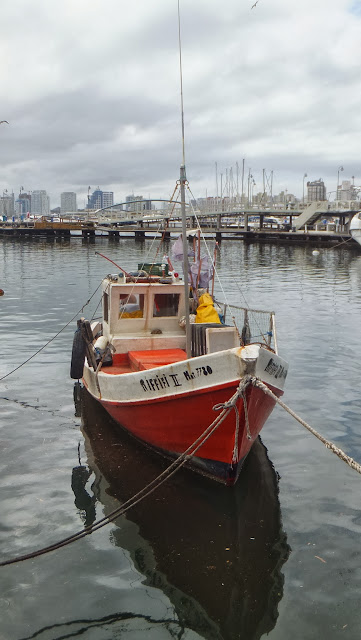 Puerto de Punta del Este, Uruguay, Elisa N, Blog de Viajes, Lifestyle, Travel