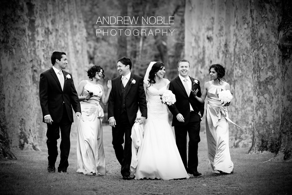 Wedding party enjoying themselves. Captured by Andrew Noble Photography.