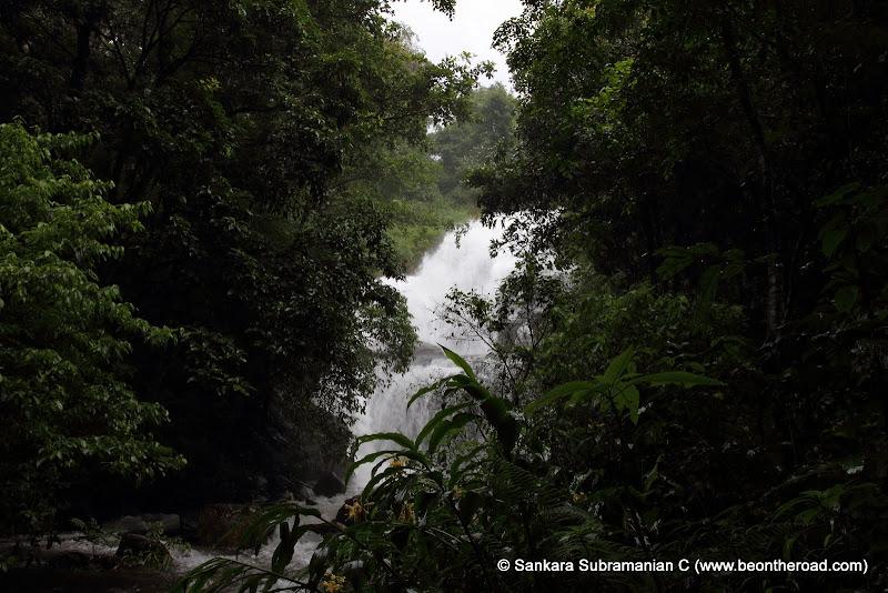 Chingara Falls in the monsoons