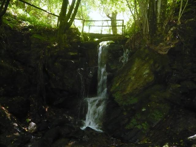 Cascata da Cabreia... L1010517