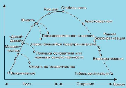 Модель организационного развития И. Адизеса