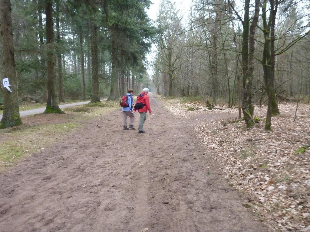 Marche Kennedy (80km) de Klarenbeek  (Nl): 28-29 mars 2014 P1000629