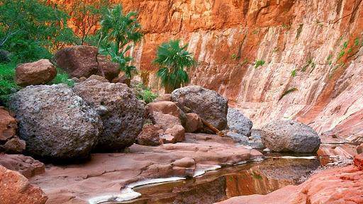 Hidden Oasis, El Cajon Canyon, Baja, Mexico.jpg