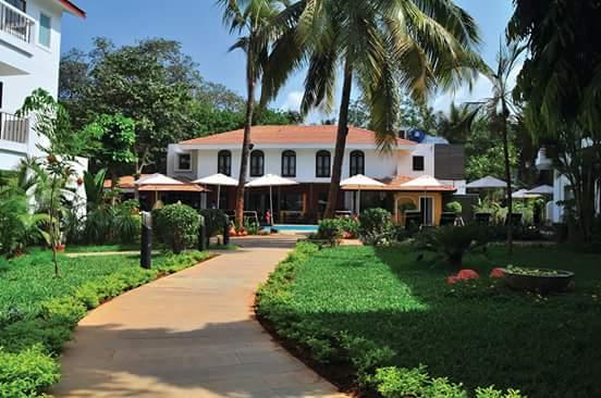 Citrus Goa
