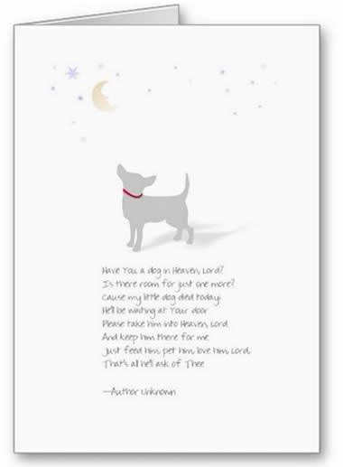 dog sympathy card - words to describe dog
