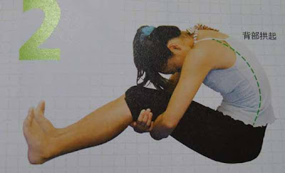 Spinal Erectors Stretch
