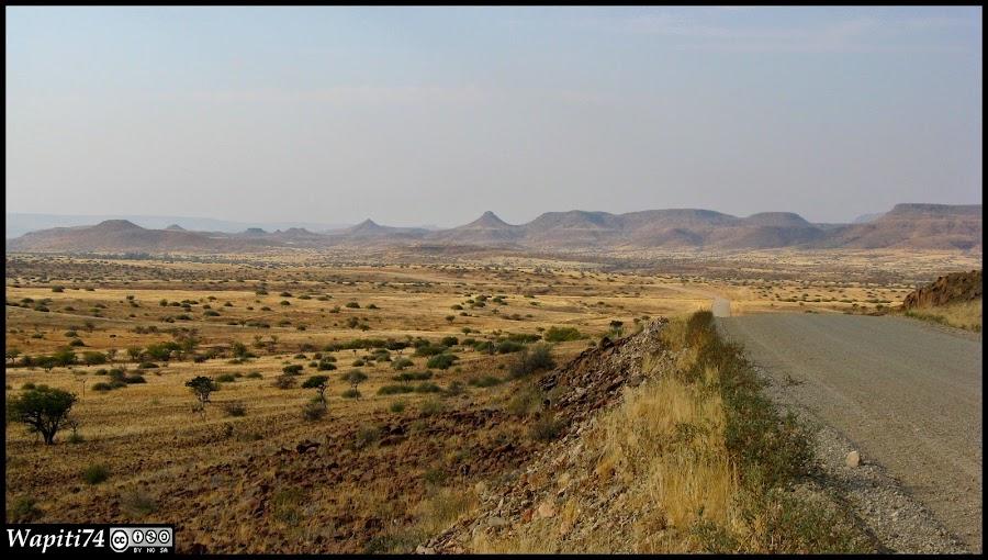 Balade australe... 11 jours en Namibie IMG_0566