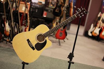 Santa Cruz Acoustic RM260
