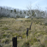Old fence-line at Paton's Hut (290674)