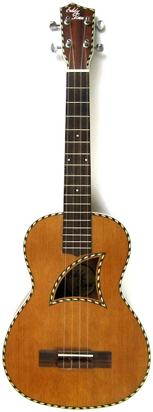 Eddy Finn Rope Mahogany Acoustic Tenor