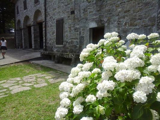 Sanctuary of Madonna of Calvigi, Granaglione BO, Italy
