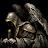 Calin Marinescu avatar image