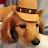 JayM P avatar image