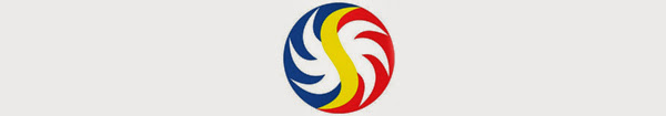 Philippine Lotto 655 July 01, 2013 – 1 Winner