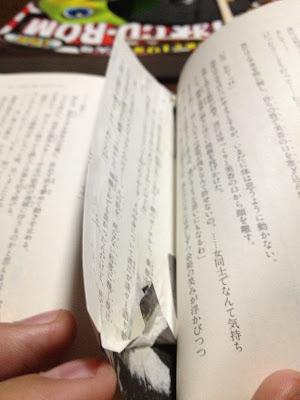 ライトノベルの挿し絵をわざわざ本のページをのりで貼り付けてまで規制した地元中学の図書室司書は頭おかしいと思う。本や著者編集... on Twitpic