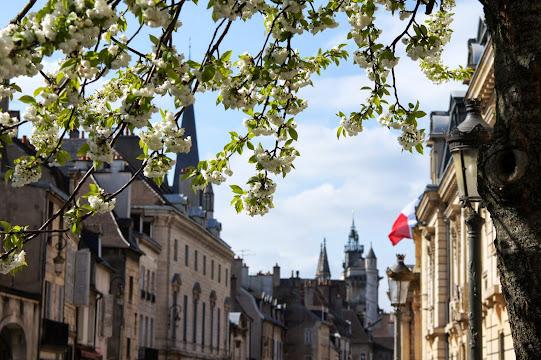 Дижон весной - Франция весной, куда поехать весной во Франции, что посмотреть весной во Франции, весна во Франции, весенние фестивали Франция, весенние карнавалы Франция, мероприятия весной во Франции, что посетить весной во Франции, Париж весной, что делать в Париже весной, какая погода в Париже весной