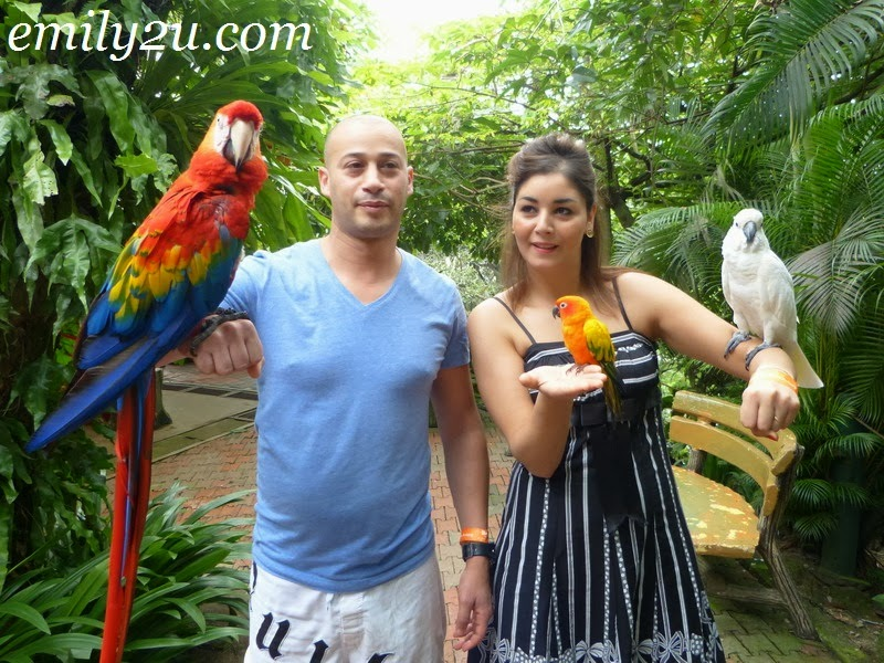 KL Bird Park @ Kuala Lumpur Lake Gardens