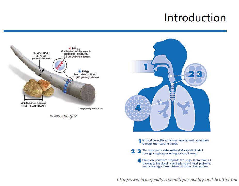 Introduction to particulate matter and respiratory lung system