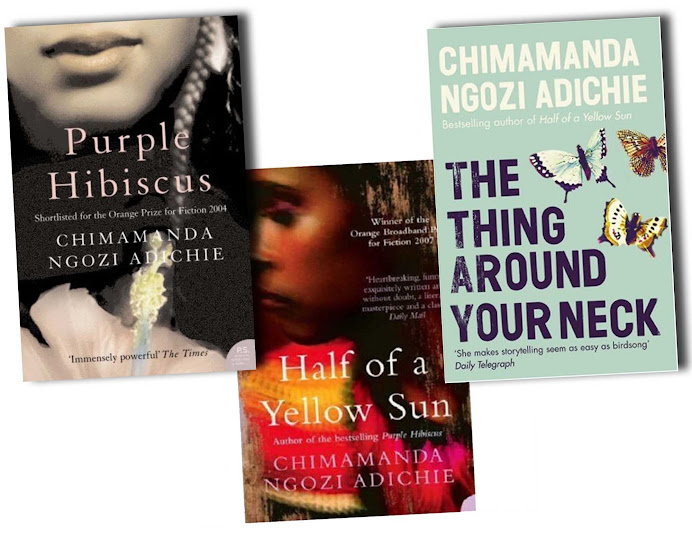 Chimamanda Ngozi Adichie Americanah review comentario texto castellano
