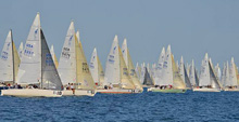 J/24 sailboats- sailing upwind after starting line