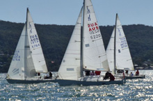 J/24s sailing one-design off Australia