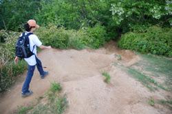 아차산 용마산 숲길