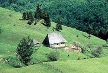 Carpathian region