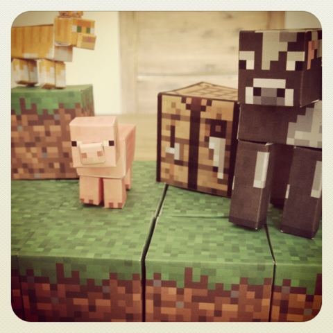 Sunny By Design Let The Minecraft Party Planning Begin