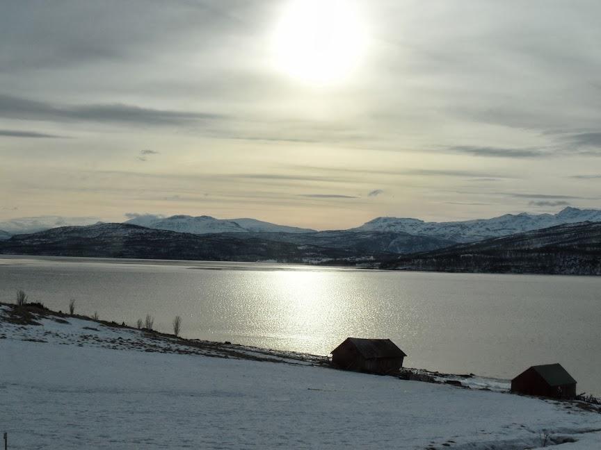 Norvège mars 2014 SAM_1418