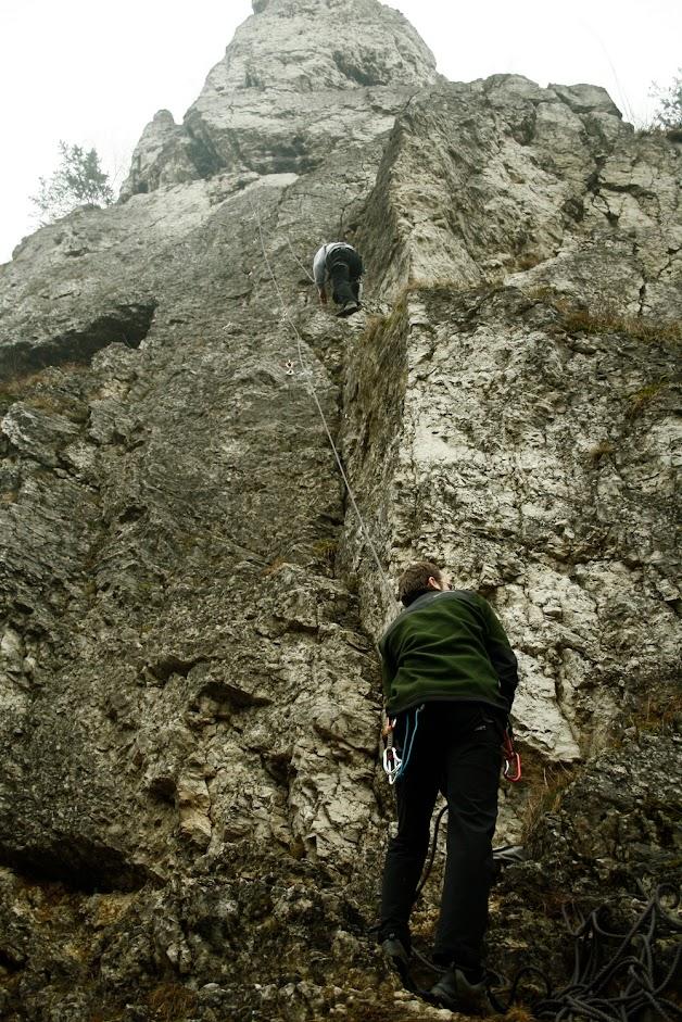 Żabi Koń w Dolinie Kobylańskiej