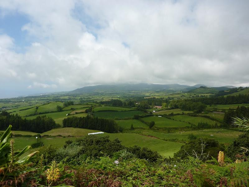 Açores- Natureza viva P1000297