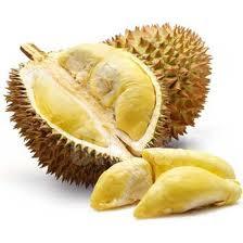 durian,durian monthong,durian obat