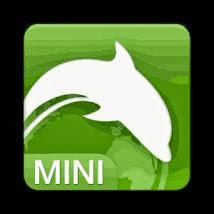Dolphin mini