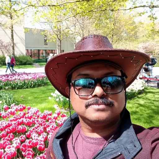 Aneesh M N's avatar