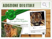 adozione_digitale_zoom