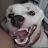 Justin Rivera avatar image