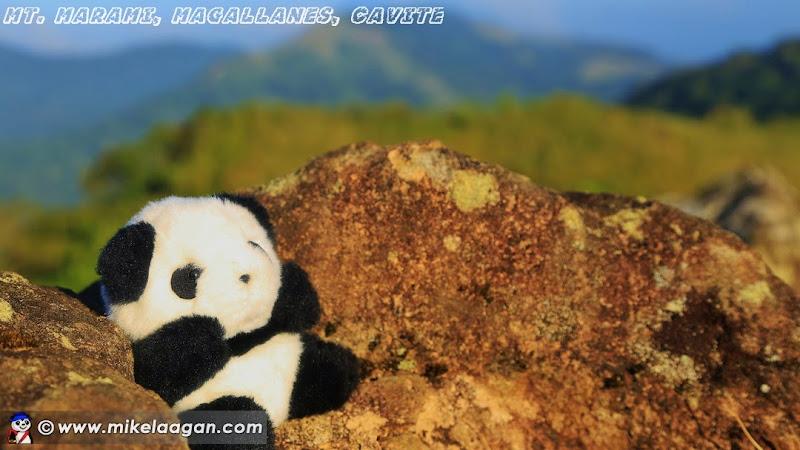 Utazo at Mt Marami