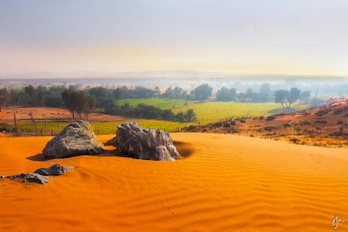 Desert Greens!  Camera Fujfilm X-T1 Lens Fujifilm XF 16-55mm F/2.8 LMWR @ 16mm Exposure f/11 | 250 Sec...