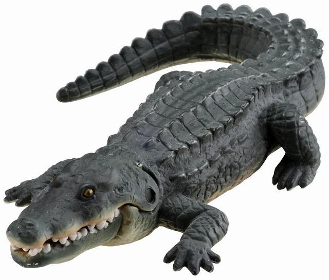 Hình ảnh sinh động của con Cá sấu sông Nile Ania AS-08