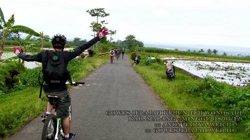 Kami pulang menuju Kota Malang melewati Singosari.
