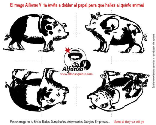 puzzle de los cerdos